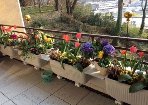 Wetter: Attraktive, große Wohnung mit Balkon