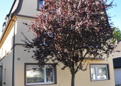 Straßenansicht von gemütlicher Wohnung mit Terrasse und Balkon in Gevelsberg